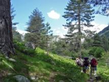 GR nord, vers les bergeries de Tolla
